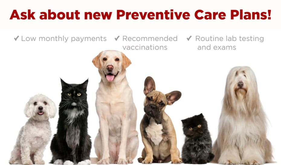 Tulsa Pet Care Plans